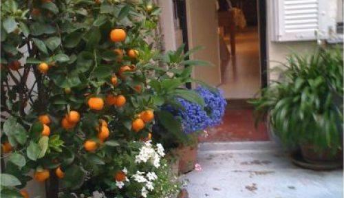 Jardinier de confiance
