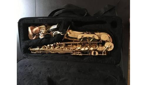 Saxophone Alto Roy Benson et sa housse de transport
