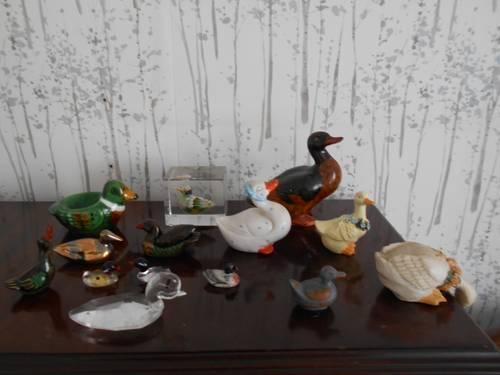 Vends collection canards et oies