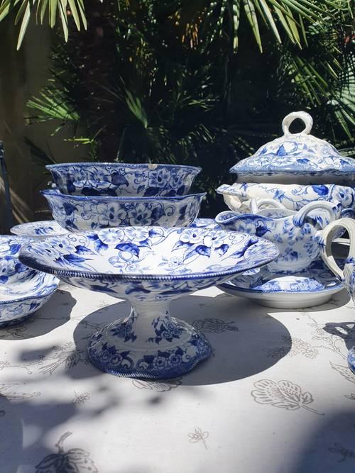 Coupe sur pied 19ème, liserons bleus, Flora Creil Montereau