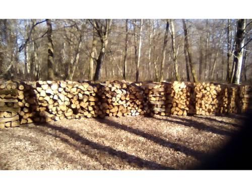 Vends bois de chauffage, bois blanc et bois dur