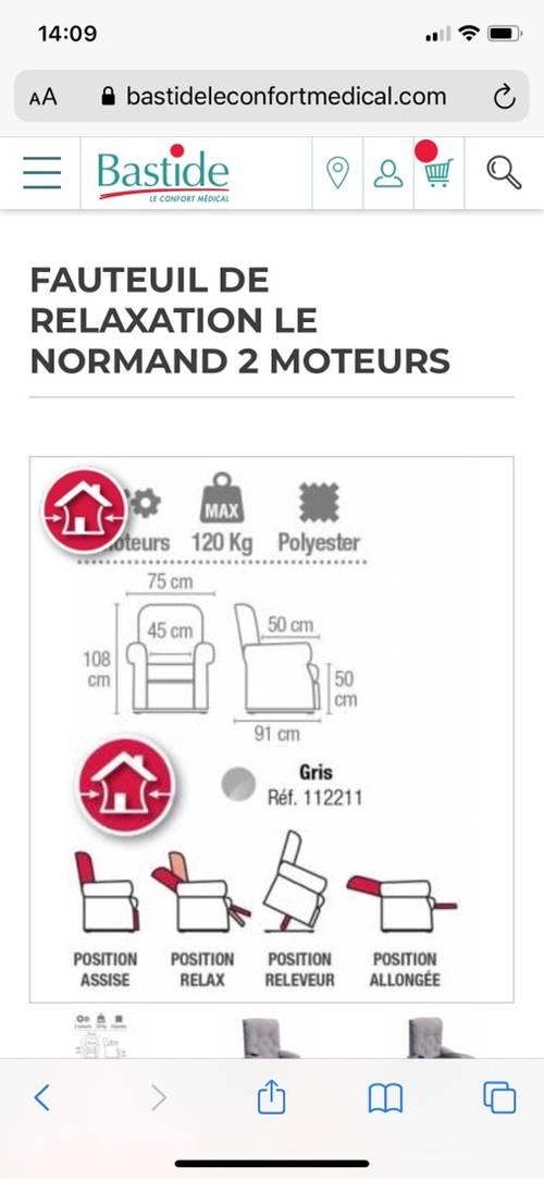 Vends fauteuil releveur de chez Bastide, modèle le Normand, 2moteurs