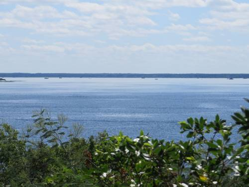 Loue villa à Biscarrosse (40) villa superbe vue lac sud - 10couchages