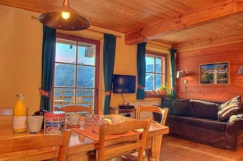 Loue appart 4-6pers avec piscine sauna et jacuzzi, Alpe d'Huez vue ++