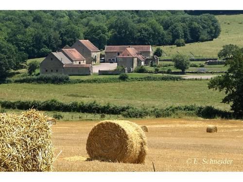 Loue domaine, la Tour de Giry, réceptions et évènements jusqu'à 135invités, Fontangy (21)