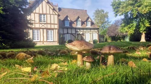 Loue belle demeure normande de 12pièces dans son écrin de verdure - 14couchages - Manneville-sur-Risle (27)