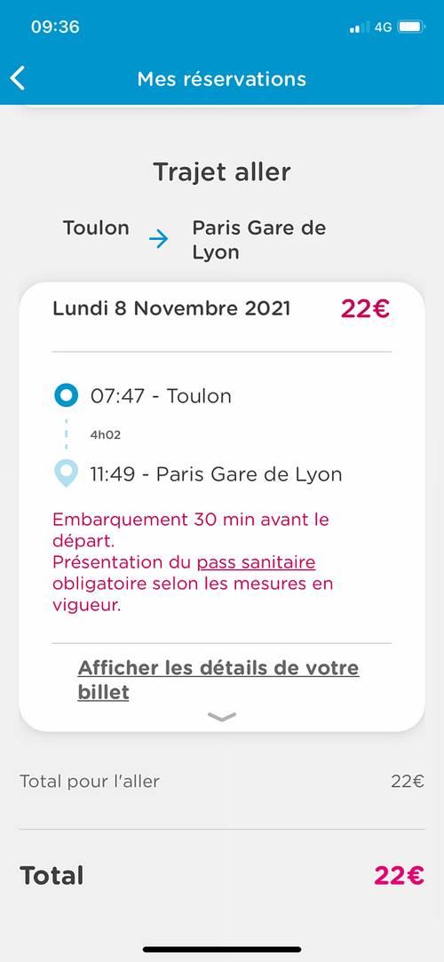 Billet de train 8novembre - Toulou - Paris
