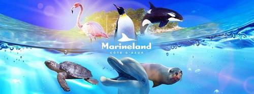 Vends 5billets Parc Marineland (valides jusqu'au 31décembre)