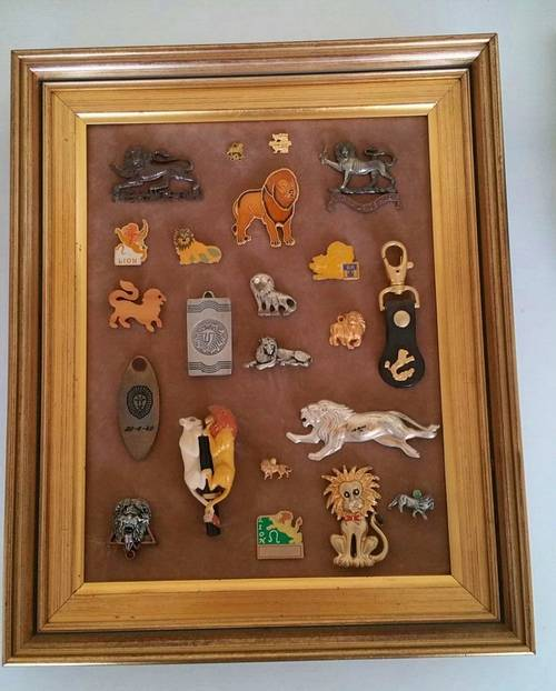 Collection Lions Miniature