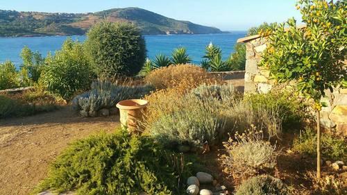 Loue Corse Cargese, Rez de jardin de villa, 4à 5couchages