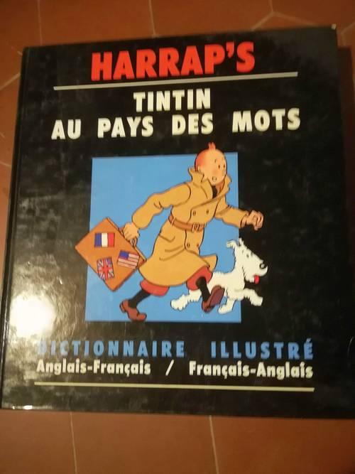 Dictionnaire HARRAP'S Tintin au pays des mots, français / anglais