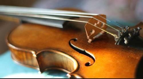 Propose cours de violon pour débutants et amateurs