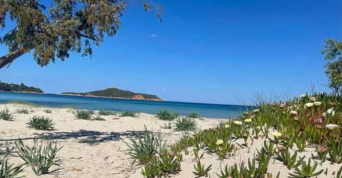 Loue T2Rez de chaussée, jardin, piscine, 4mn plage à pied, Corse sud