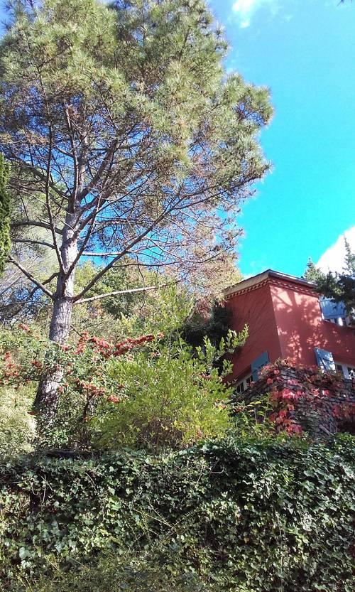 Loue maison de famille 6couchages parc haut Languedoc