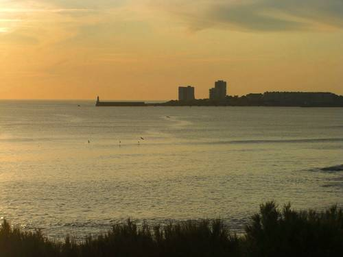 Loue face mer et plage Studio 4couchages 30m² très lumineux