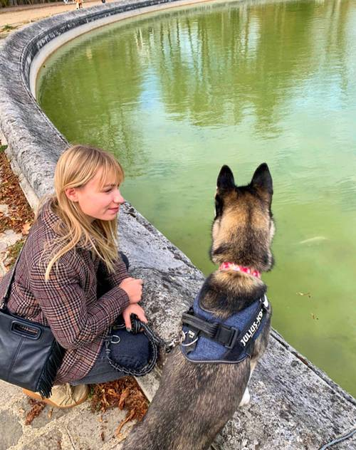 Propose services de promenade de chiens