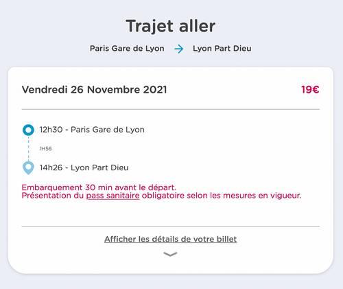 Propose billet de train AR Paris → Lyon du 26/11au 28/11- Ouigo adulte