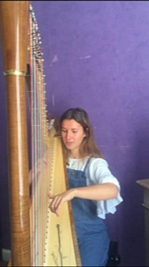 Propose des cours de harpe pour débutant (1er cycle de conservatoire)