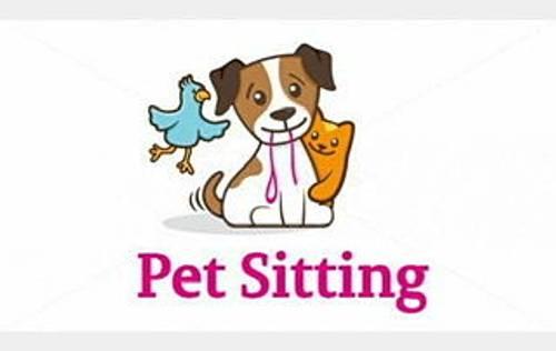 Propose petsitting
