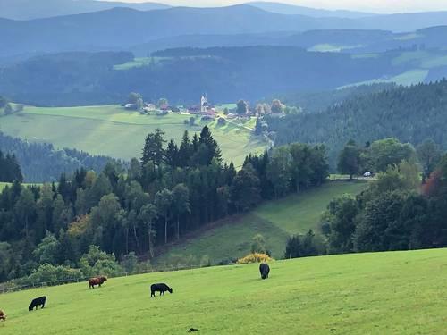 Propose séjour linguistique en Autriche - vacances de la Toussaint