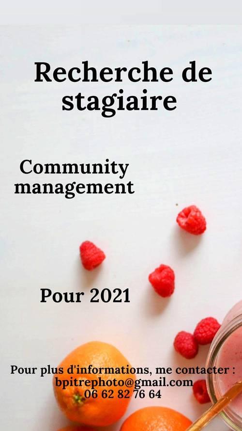 Propose un stage en community manager et marketing digitale