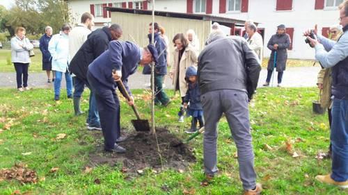 Service civique - Buglose - personnes âgées / permaculture