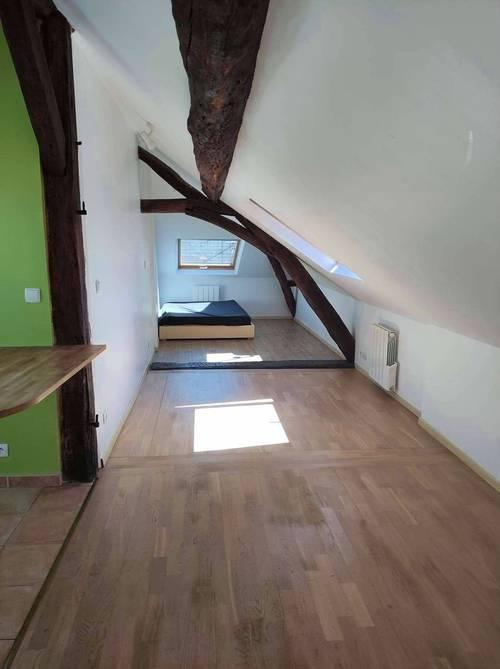 Loue T1, style loft 30m², Orléans centre cathédrale (45)