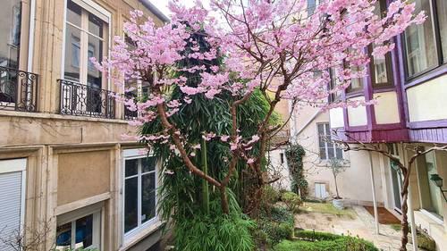 Loue Triplex comme une maison en 2nd corps, rue Dom Calmet Nancy (54) - 3chambres, 125m²