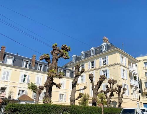 Loue appartement 4couchages en Août - 84m², Trouville-sur-Mer (14)