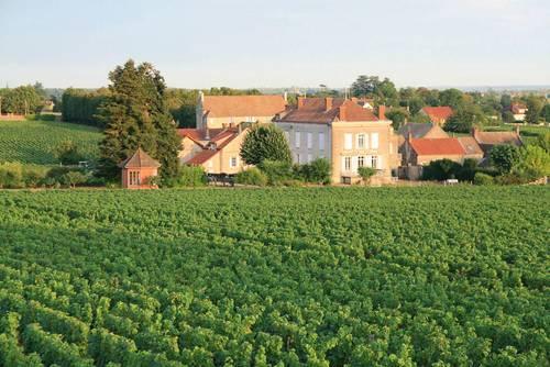 Recrute pour les vendanges 2021+/-15septembre Mercurey Bourgogne - H/F