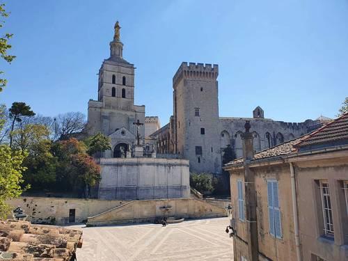 Vends très bel appartement avec terrasse et vue Palais des Papes, 3ch - 177m², Avignon (84)