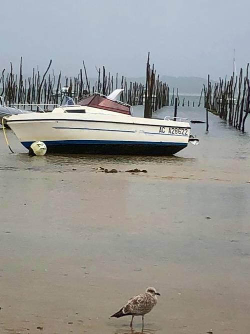 Vends bateau Beneteau, modèle OMBRINE 6m30