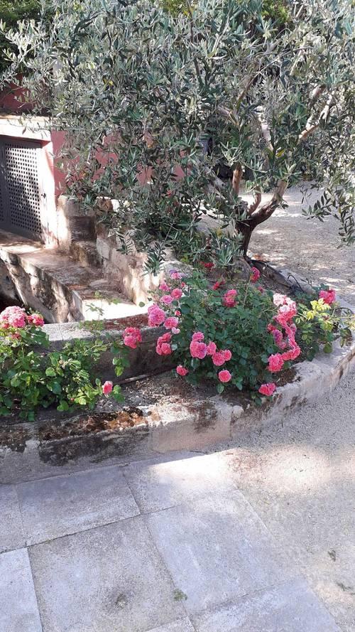 Vends mas rénové centre village - 4chambres, 180m² - Paradou (13)