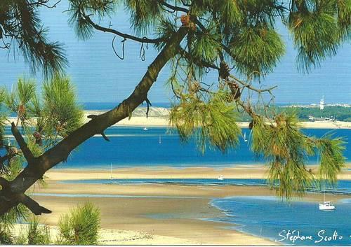 Loue Villa à Pyla sur Mer (33) proche plage 6couchages